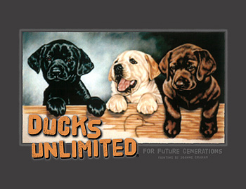 Ducks Unlimited Boxed Set t-shirt